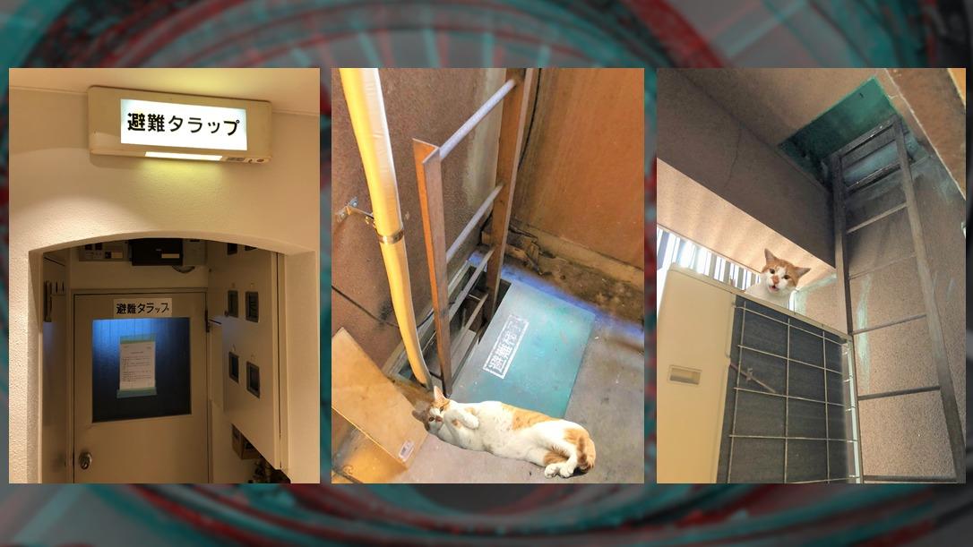 避難器具専用室