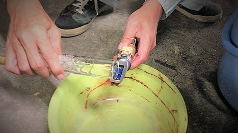 糖度計検知部に泡試料水溶液を注ぎ乗せる